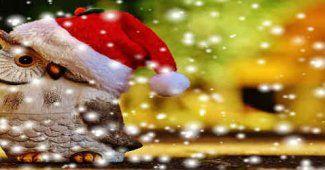 Message de voeux pour cartes de Noel